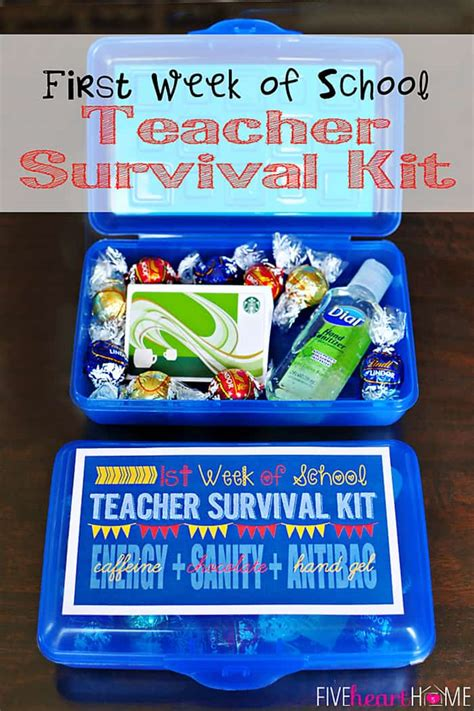 zucchini summer 5 back to school gifts for most popular posts