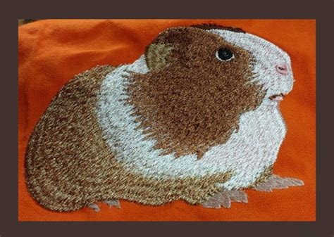 Embroidery Design Guinea Pig | guinea pig machine embroidery pattern