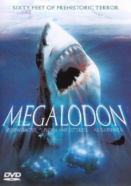 megalodon sharks still lives evidence that megalodon is not extinct evidence of megalodon megalodon the monster shark