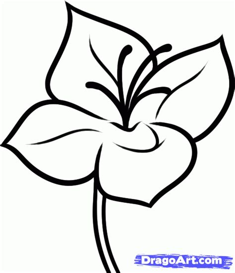 how to doodle easy flowers how to draw a flower step by step flowers pop