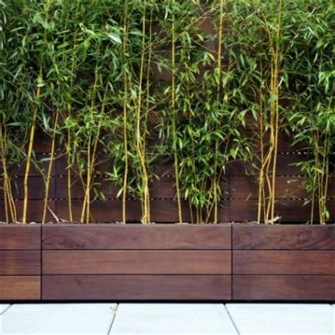 modern wood planter modern wooden planter boxes deck