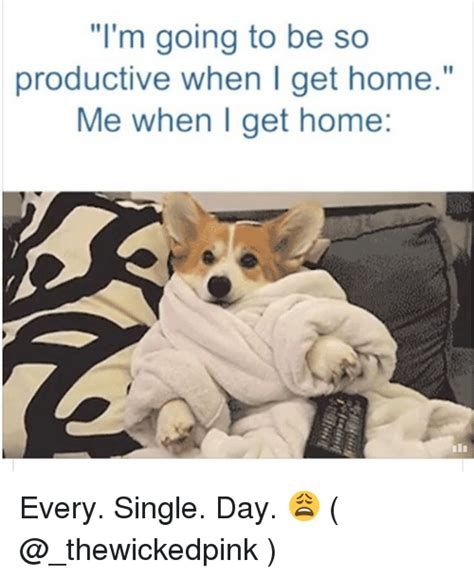25 best memes about when i get home when i get home memes