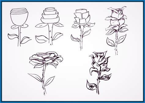imagenes de rosas sencillas para dibujar imagenes de dibujos excelentes imagenes de dibujos para