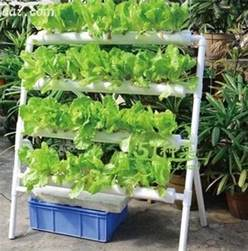 Container Gardens Pinterest - hydroponic vertical garden systems aquaponics plans download hydroponic vertical garden finches