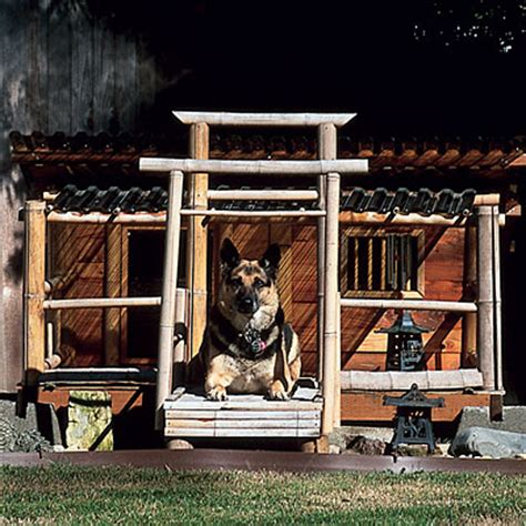 fun dog houses 13 fun functional dog houses time to build