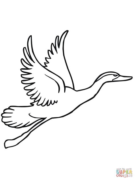 duck call coloring page pin duck coloring pictures on pinterest