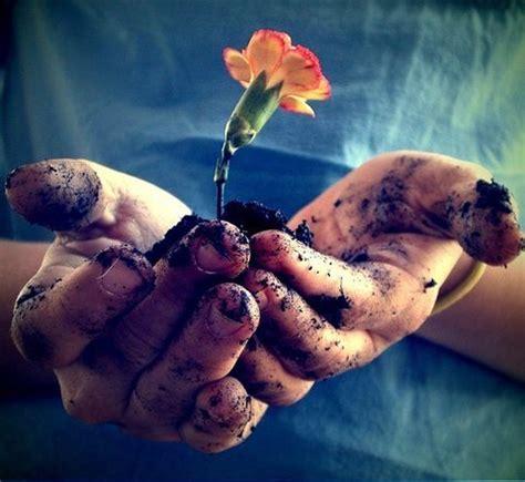 fiore manni biografia 187 fiore tra le occhi sull eterno
