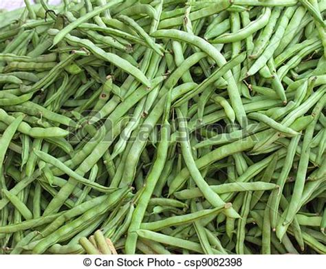 Green Also Search For Pictures Of Green Beans For Sale In The Market Green