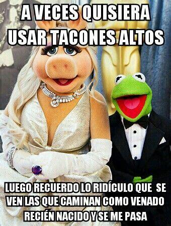 imagenes chistosas de zacatecas jajajaja divertiidos pinterest frases