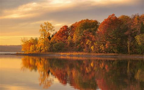 Dusk Autumn Forest Lake Water Dusk Autumn Forest Lake Water Reflection Wallpaper