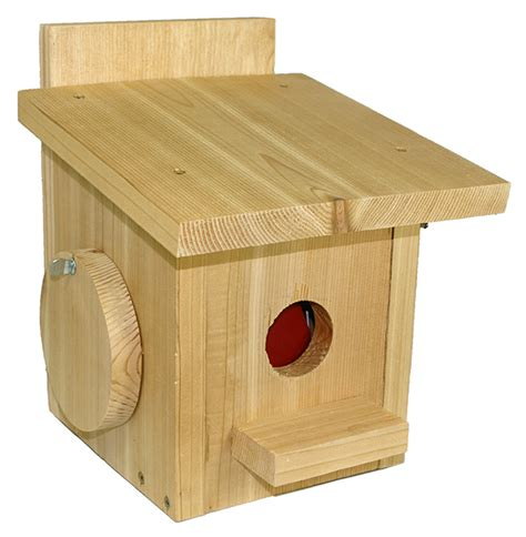 house sparrow nest box design starling house sparrow nest box trap pmca martin market place