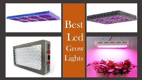what are the best led grow lights best led grow lights buying guide updated for growing
