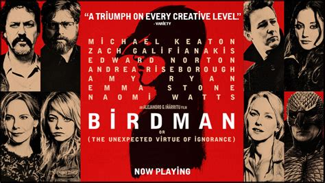birdman movie birdman or the unexpected virtue of ignorance pop verse
