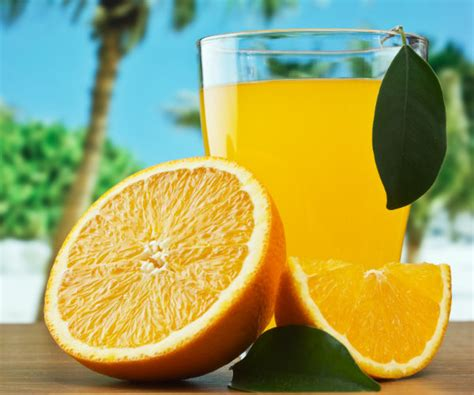 7 Reasons Orange Juice Is For You by Irma May Speed Demise Of Orange Juice Newsmax