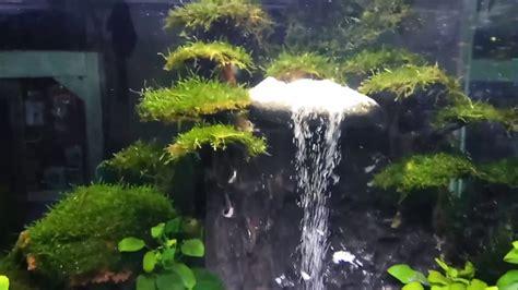 membuat air terjun aquascape youtube cara membuat air terjun aquarium aquascape hammock