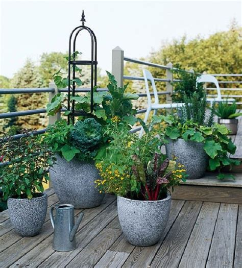amazing of container vegetable garden plans stunning 15 stunning container vegetable garden design ideas tips