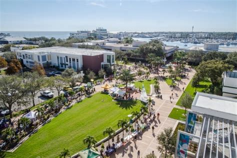 Fgcu Mba Ranking by Of South Florida St Petersburg Profile