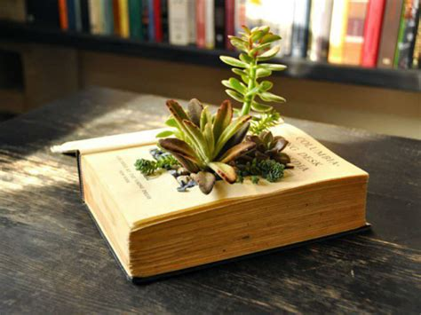 How To Make A Book Planter by How To Make Your Own Book Planters For Succulents World