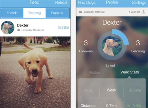 for dogs app woof iphone app for iphone apps finder
