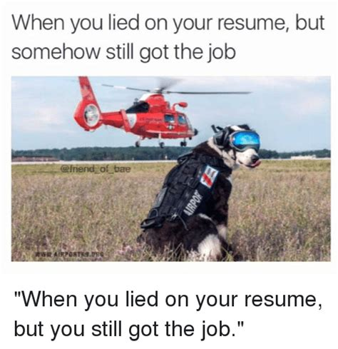 can you lie on your resume resume ideas