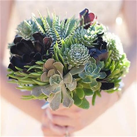 Wedding Bouquets Using Succulents by How To Incorporate Succulents Into Your Wedding In Season