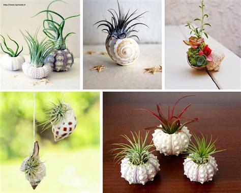 vasi per piante fai da te vasi fai da te non sprecare