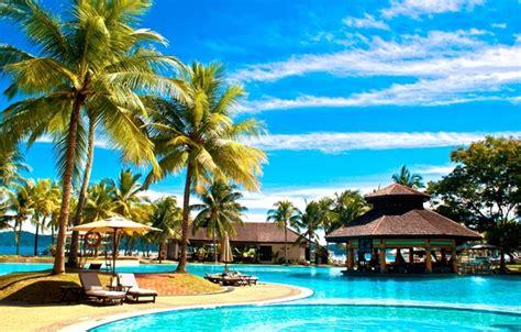 wallpaper nature palm trees  ocean pool resort