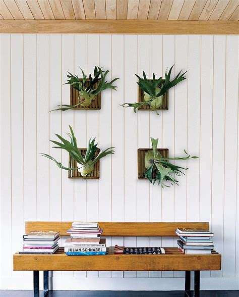 plant home decor ideas for decorating with houseplants popsugar home
