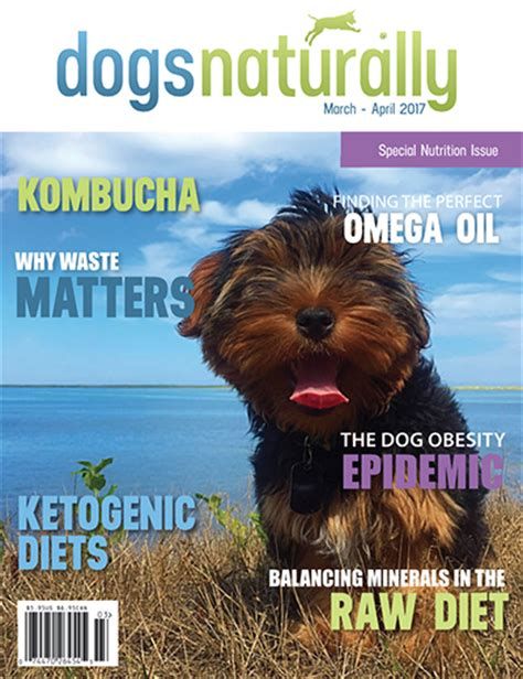 ketogenic diet for dogs ketogenic diet for with seizures ketogenicdietpdf
