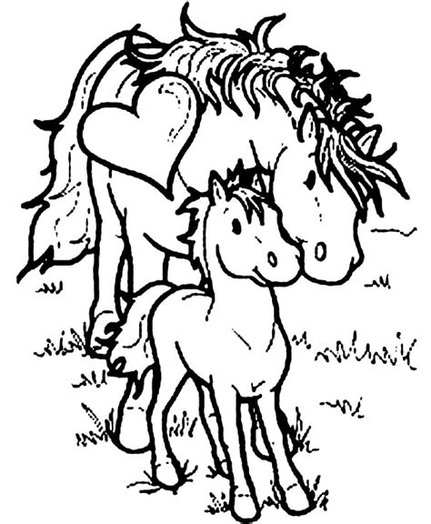 coloring pages of baby horses adorable baby horse coloring sheet coloring pages