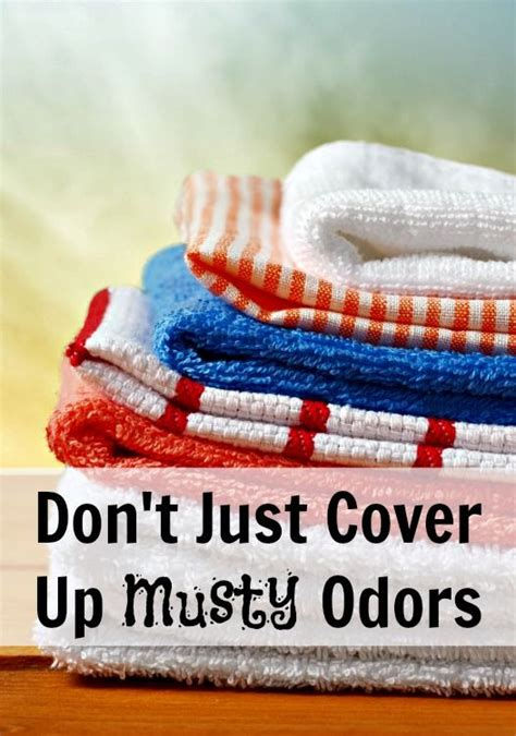 how to get rid of musty odors clean it household odors