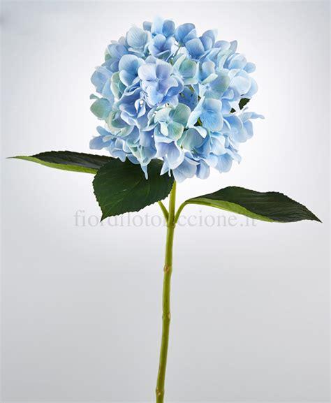 fiori stabilizzati prezzi ortensia duca scegli il colore fiori e piante