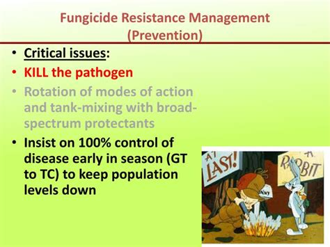 ppt fungicide update for apple disease management