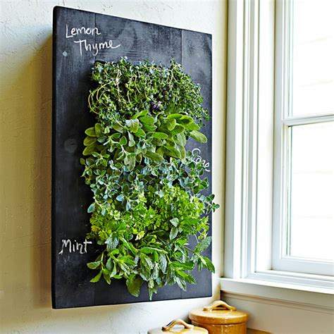 wall herb garden chalkboard vertical wall planter the green head