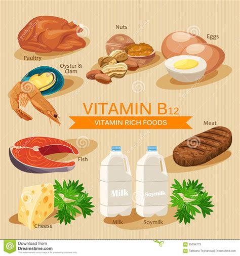 fruit b vitamins vitamin b12 vitamins and minerals foods vector flat
