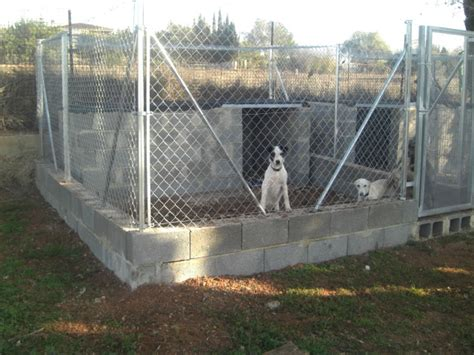 building a kennel kennel projects 2012 g r i n contributes to building funds galgo rescue