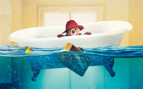 bathroom flooded what to do paddington the bear with red hat flooded bathroom