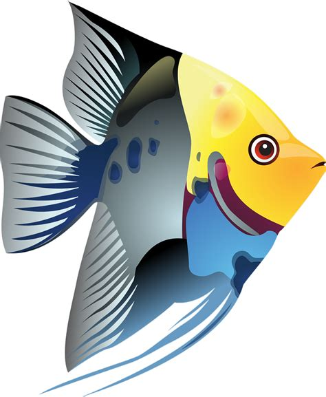 fish clipart free to use domain fish clip