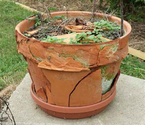 terracotta flower pots mosaic warning how to mosaic