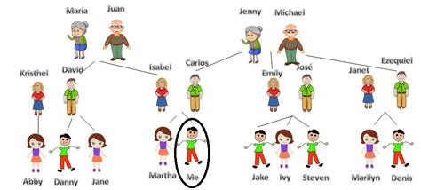 how to section a family member english exercises present simple quiz