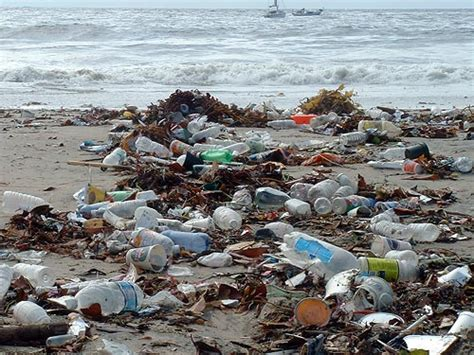 20 Facts About Ocean Pollution