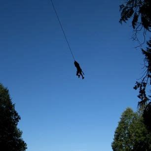 spiderman rope swing d a young and washington on pinterest