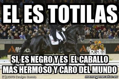 imágenes más asombrosas del mundo portada totilas el caballo m 225 s caro del mundo pictures to