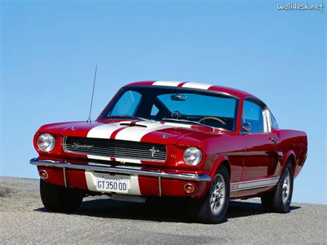 ford mustang shelby gt350 1965 1966 cars pictures