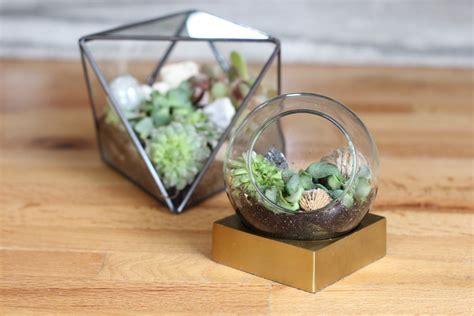 brightnest make your own terrarium in 7 simple steps