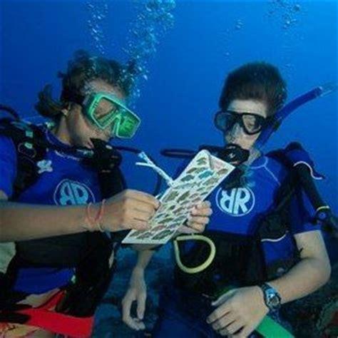 information about marine biology careers marine biology