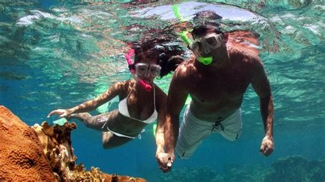 roatan dive resorts best roatan resorts great for snorkeling diving