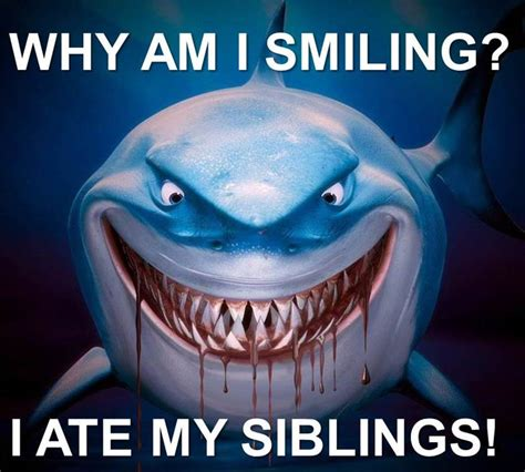 Finding Nemo Meme - finding nemo bruce meme www pixshark com images
