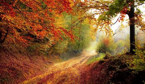 color run columbus ohio best hikes and scenic drives for fall color in ohio