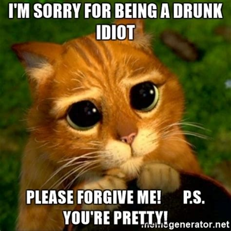 Im Sorry Meme - i m sorry for being a drunk idiot please forgive me p s